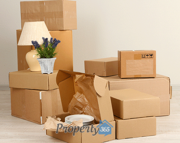 img-home-packing