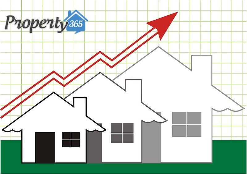 Improve-Real-Estate