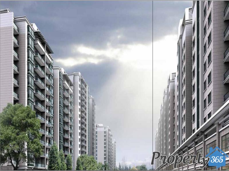 CBD-DCK-Property365